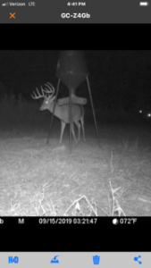 Boss Buck Deer Feeders